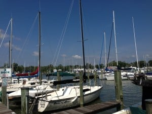 One of the several marinas in Deale