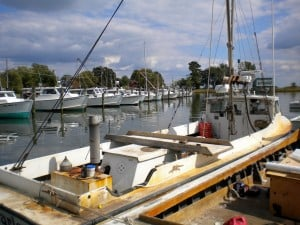 Dogwood Harbor skipjack fleet on Tilghman Island