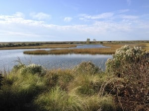 Poplar Island, Maryland