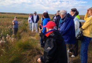 Guided tour of Poplar Island