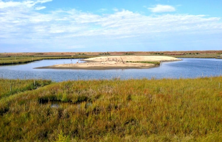 Poplar Island Maryland