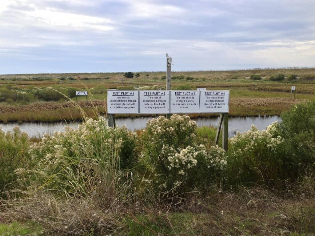 Test area on Poplar Island