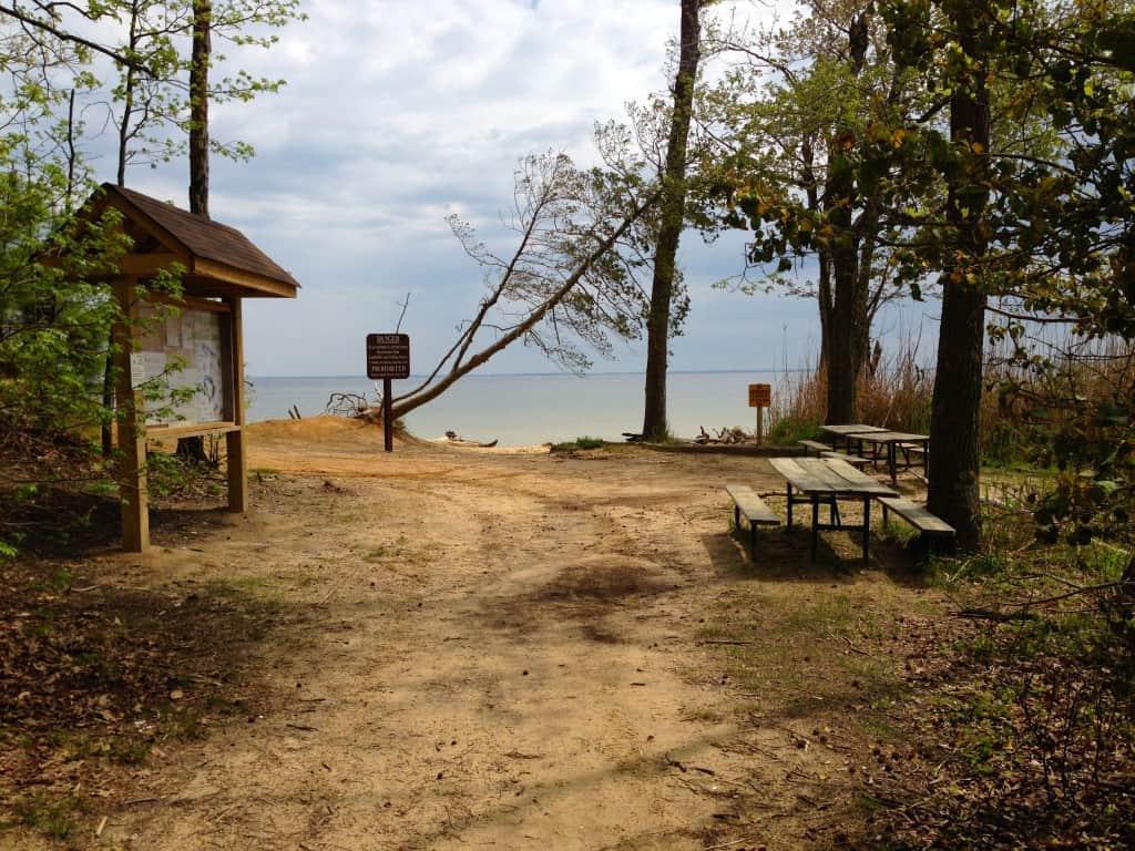 Beach picnic area at Calvert Cliffs State Park, MD