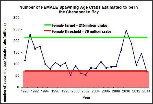 Number of spawning age female blue crabs in the Chesapeake Bay
