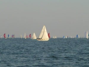 The fleet of race boats lining up to cross the starting line. The skill is to get as close as you can before the horn blows, while other boats block your wind or try to force you off course.