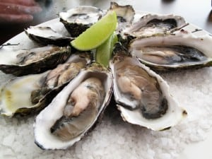 Oysters on half-shell