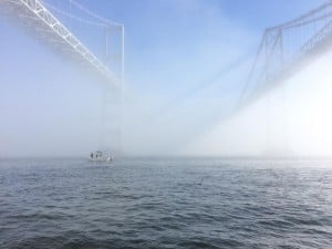 Foggy Bay Bridge