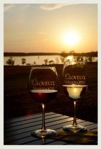 Clovelly Vineyards, Chestertown, Maryland