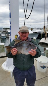 Record gray triggerfish caught off Ocean City