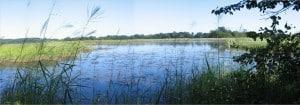 Otter Point Creek