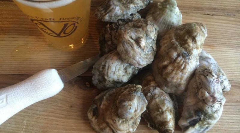 EVO craft beer & oysters