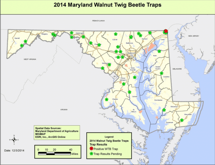 2014 Maryland Walnut Twig Beetle Traps