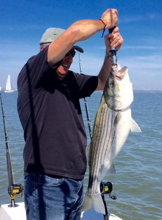 Chesapeake Bay 2015 rockfish season