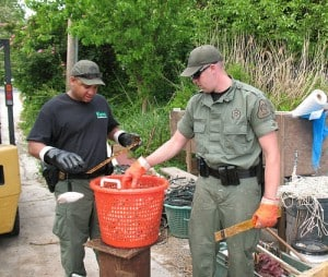 Maryland Department of Natural Resources investigate croaker