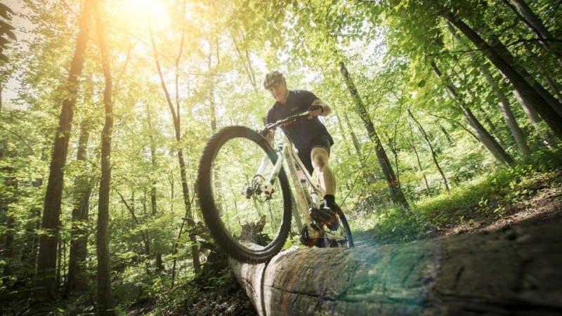 Biking in Patapsco Valley State Park
