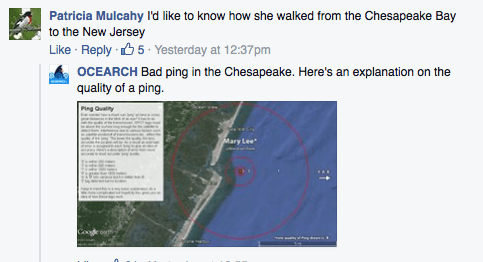 Oceana Facebook post responding to questions about the possibility of a great white share in the Chesapeake Bay