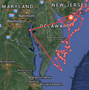 Oceana shark tracker map of Mary Lee