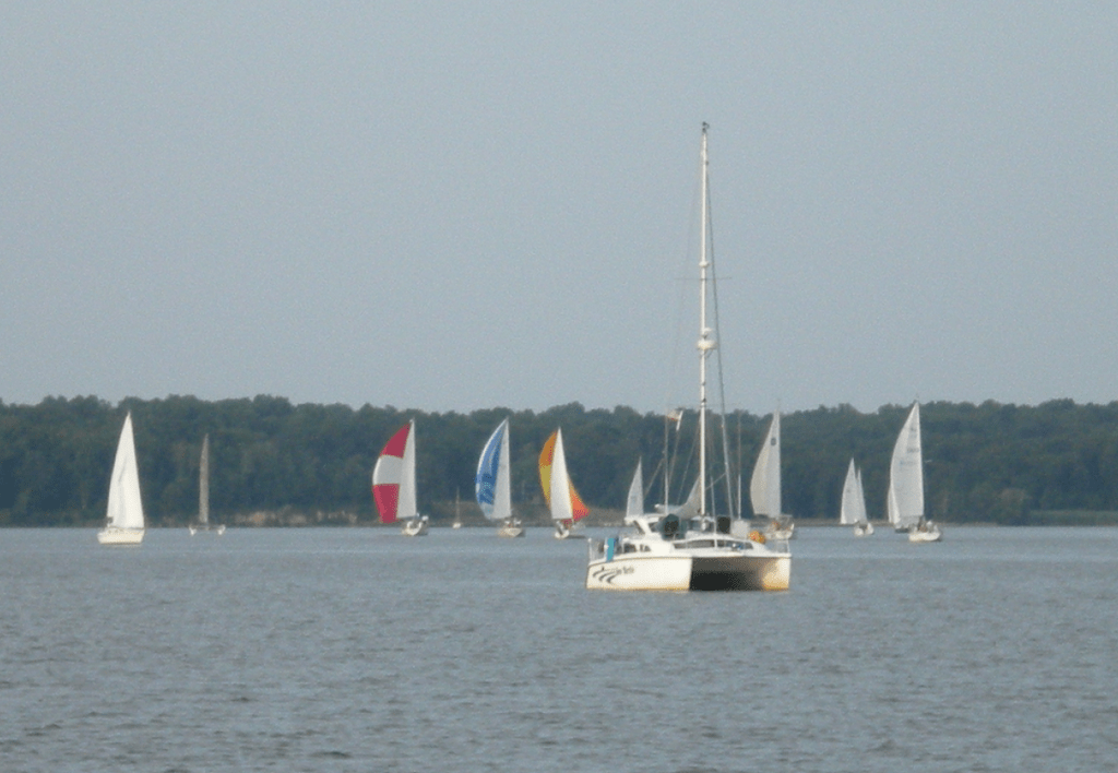 "Wednesday night sailboat races on the Bohemia River. The catamaran in the front is the ""committee boat"" (aka the race referee)"
