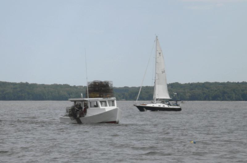 Sailboat passes a waterman checking  his crabpots