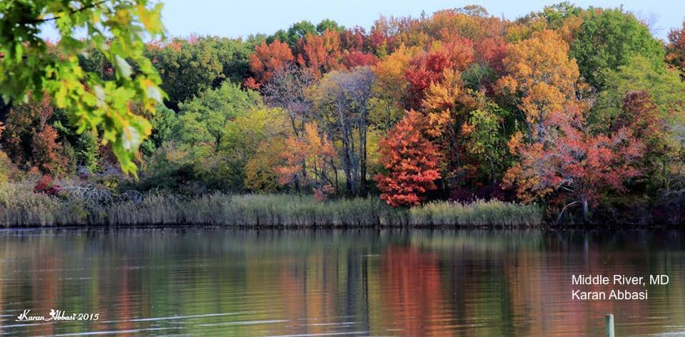 Click on the picture above to get to Justin Berk's Top Ten fall foliage pictures of the region.