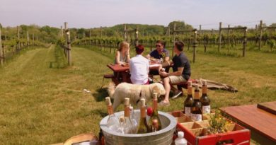 "Maryland & Virginia Wineries May Be the Next ""Big Thing"""