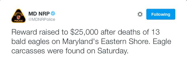 Maryland DNR tweet