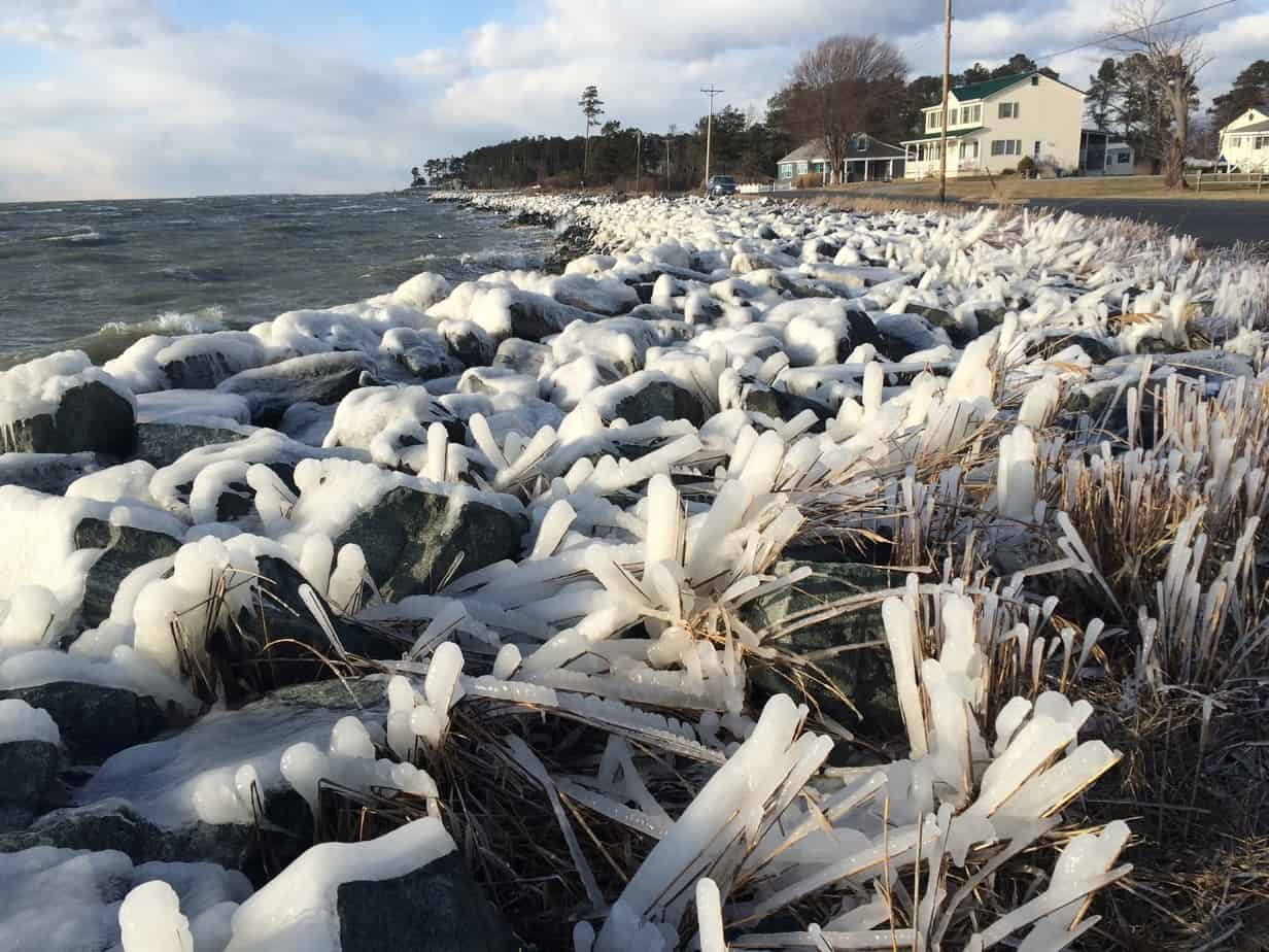 A cold wind turns the southern edge of Tilghman Island into an icy wonderland. The temperature was on the verge of balmy for a winter day, but the wind was blowing water onto shore and freezing it.