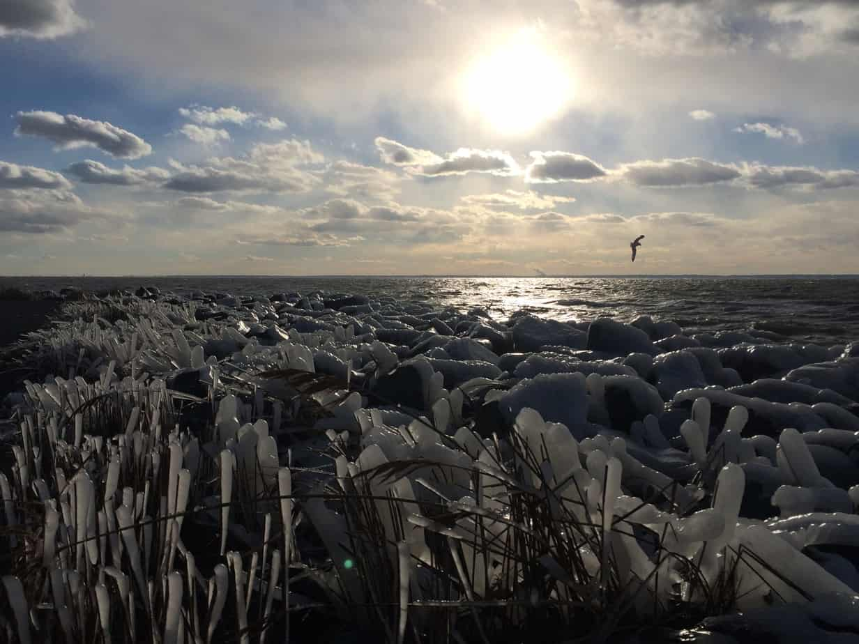 Late afternoon sun isn't enough to melt the icy cold wind blowing Chesapeake Bay spray onto the shore rocks.