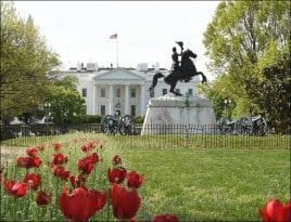 Andrew Jackson statue by the White House