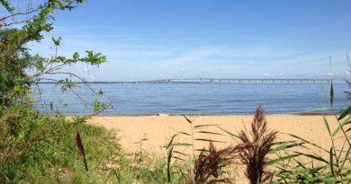 Chesapeake Bay Bridge from Kent Island, Maryland