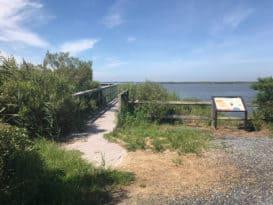 Eastern Neck Wildlife Refuge