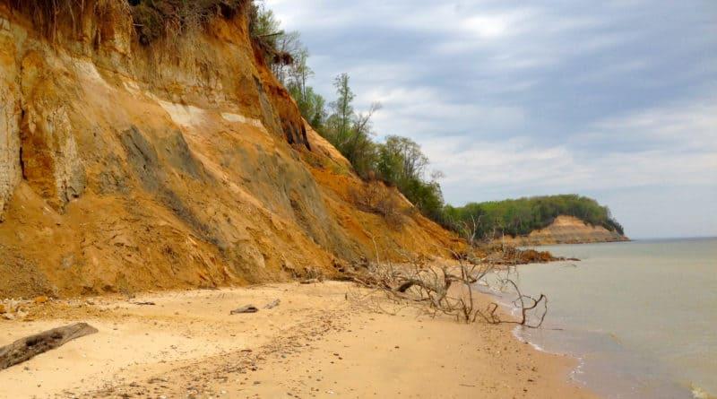 Calvert Cliffs State Park, MD
