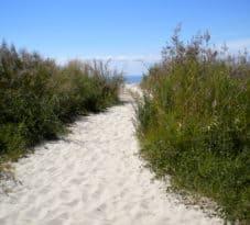 Tangier Island beach path