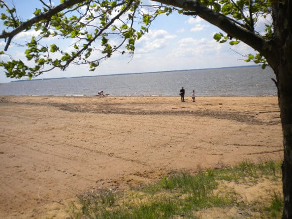 Elk Neck Beach
