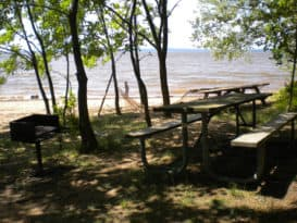 Elk Neck Beach picnic area