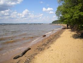 Elk Neck State Park beach