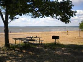 Elk Neck Beach picnic area