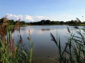 Terrapin Nature Park, Stevensville, MD