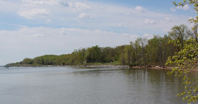 Downs Park shoreline from the pier