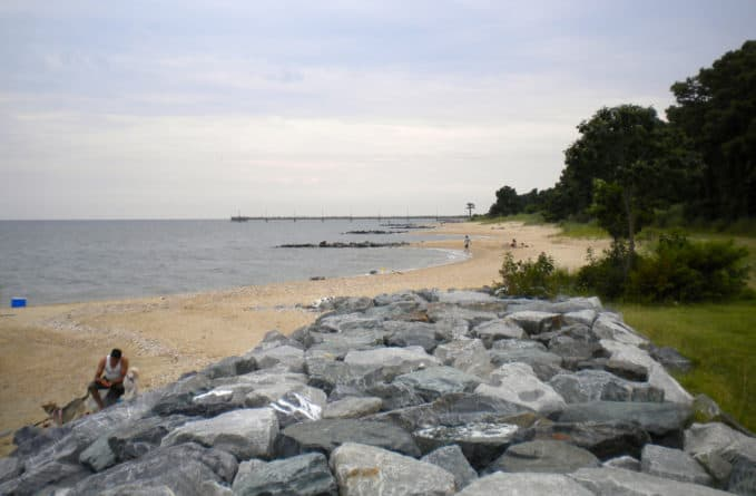 One of the two dog-beach areas of Point Lookout State Park.