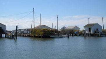 Tangier Island shanty