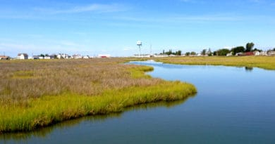 Tangier Island: Overview