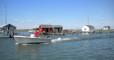 Getting to Tangier Island