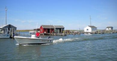 Tanger Island boat