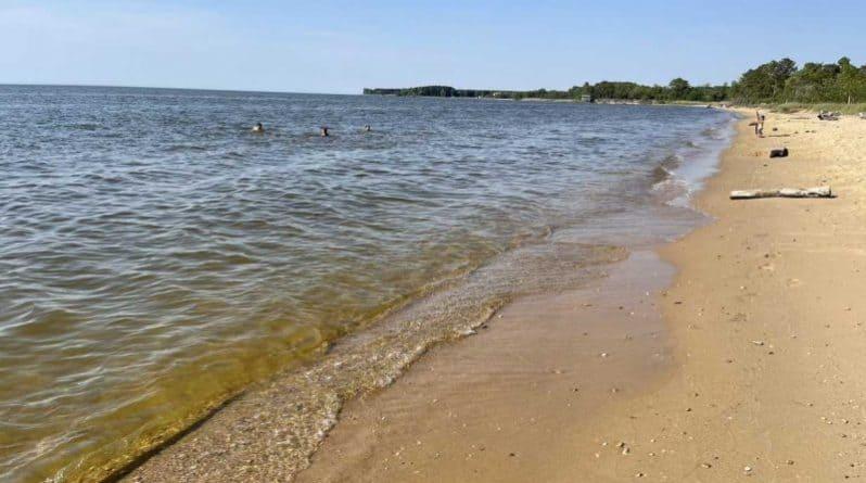 Terrapin Nature Park beach, Kent Island, MD